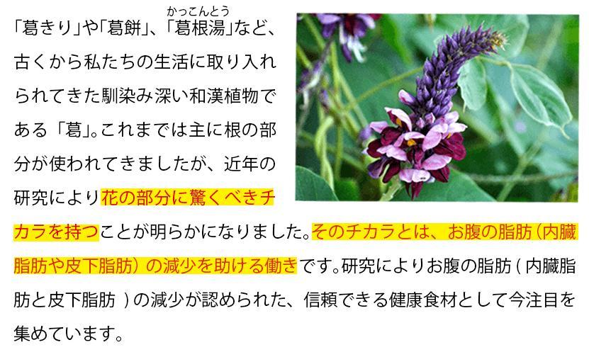 葛の花イソフラボンスリム 成分